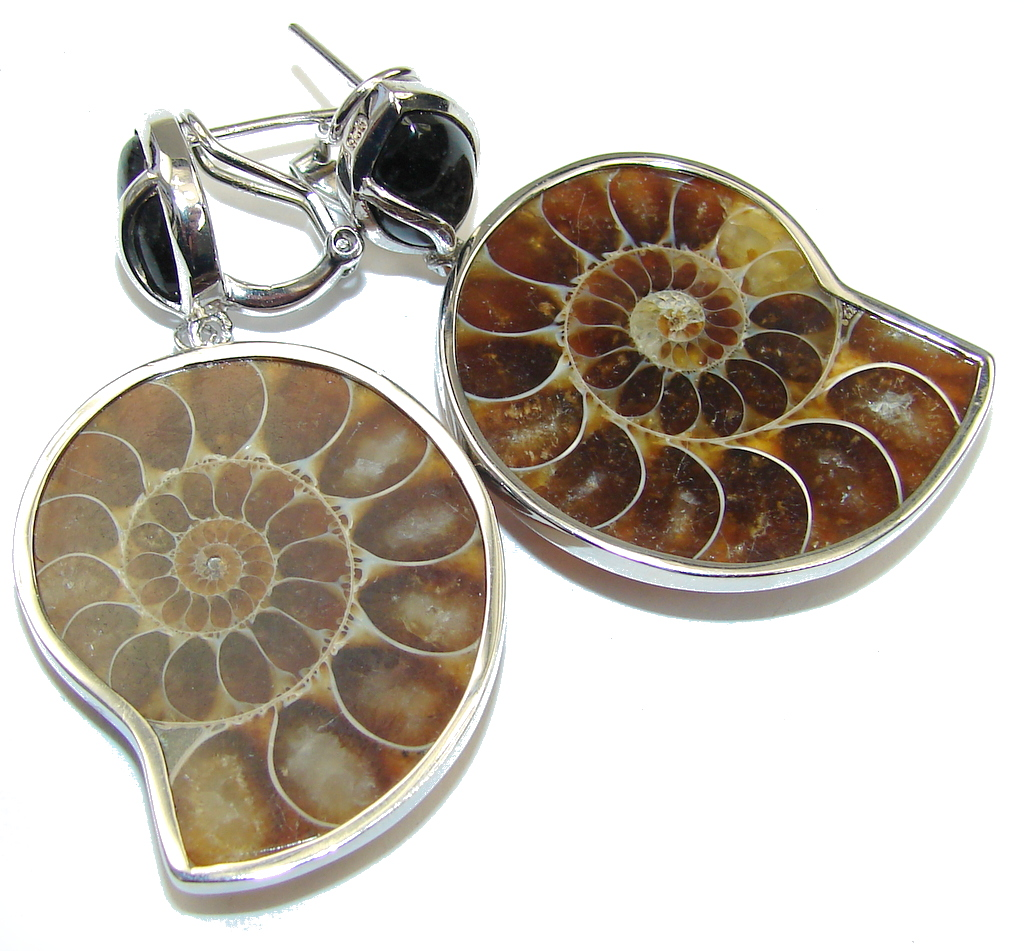Stunning! Shell Ammonite Fossil & Onyx Sterling Silver earrings